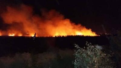 الزراعة تشكل غرفة عمليات مشتركة للحد من الحرائق