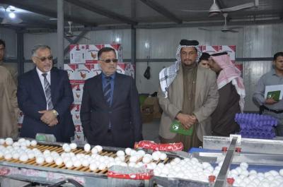 الجزائري يؤكد دعم حكومة البصرة المحلية لأصحاب شركات الدواجن الاهلية